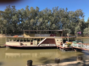 Trip Down the Murray in a Paddle Steamer