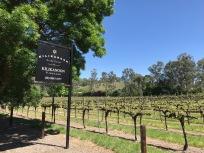 Beautiful setting, gorgeous wine - no wonder it won Best Winery Award