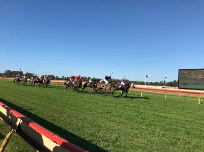 Bunbury Races