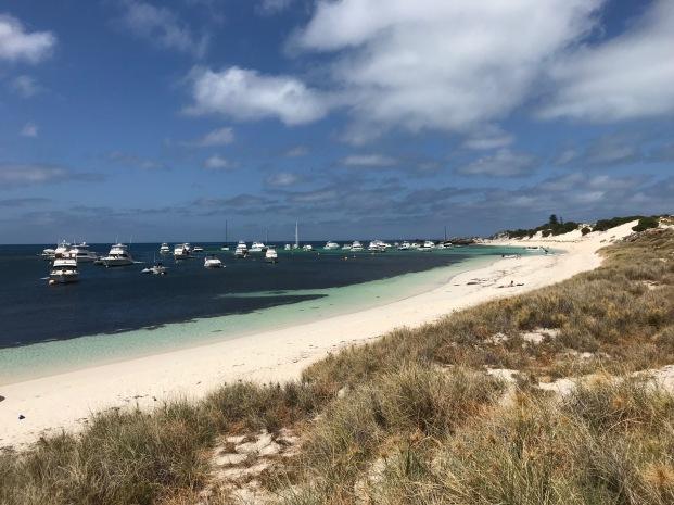 Rottnest Island 4