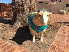 Sheila the Sheep 1