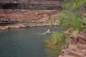 Swimming at Fortescue Falls