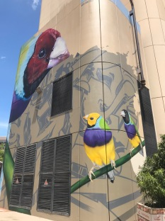 Darwin Street Art 3