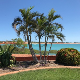 Wharf Side at Broome