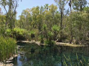Another View of Bitter Springs