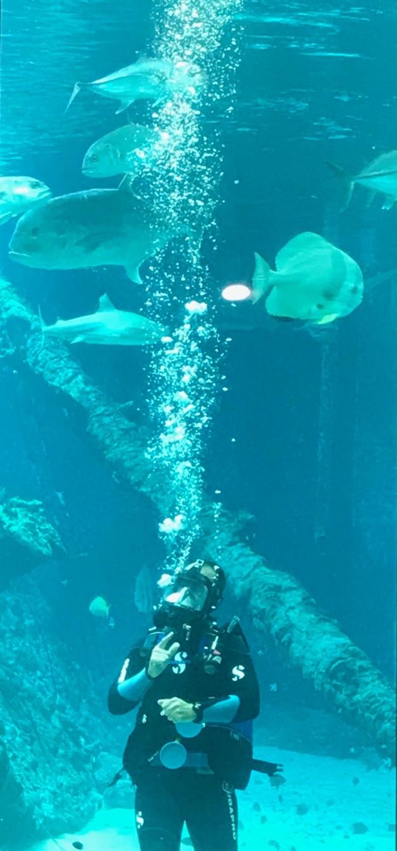 Underwater Lecture