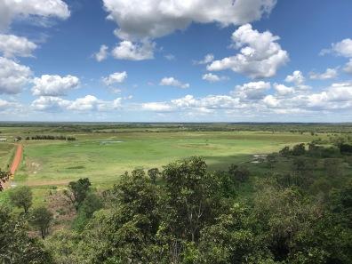 Window on the Wetlands
