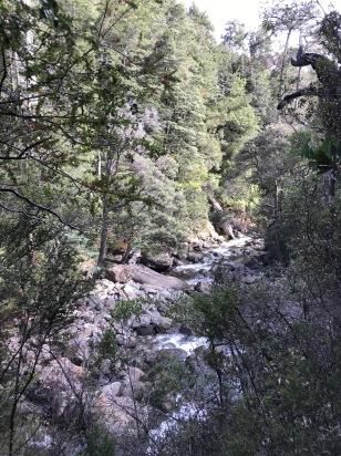 Meander Falls Track